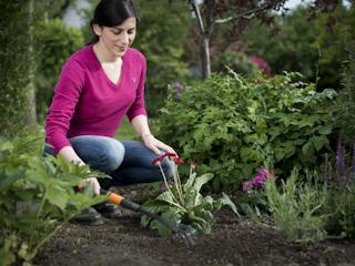Narzędzia Fiskars QuikFit™ do pielęgnacji małych roślin.